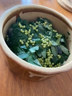 Mさまより送っていただいた山椒の葉と山椒の実の写真。この下に身欠きにしんがいるのかな