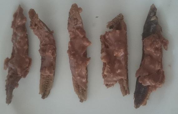 ダシがら煮干に溶かしたチョコレートと砕いたピーナッツを絡めて