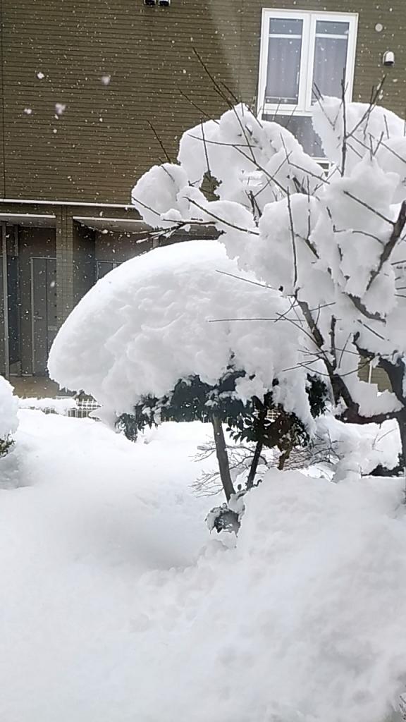 21年のスタートは大雪で