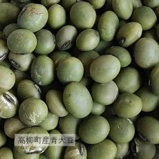 高柳町産青大豆
