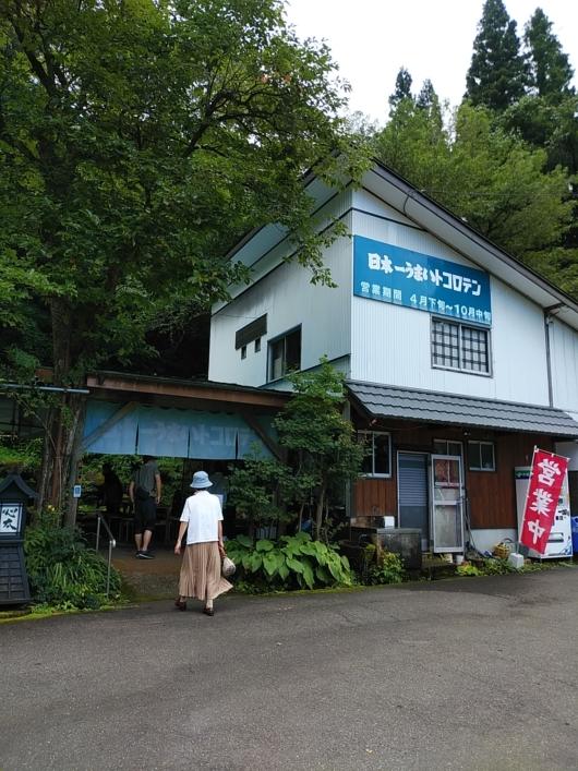 日本一うまいトコロテン屋